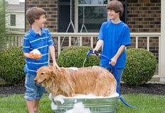Jongens die Hond een Bad geven stock fotografie