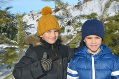 Jongens in het bos van de de winterpijnboom Stock Foto's