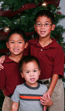 Jongens met Kerstboom stock foto