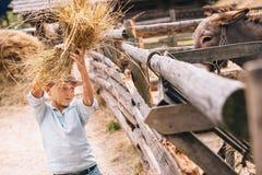 Jongenshulp om een ezel bij het landbouwbedrijf te voeden royalty-vrije stock fotografie