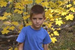 Jongensportret met bos Stock Foto