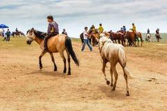 Jongensritten bareback bij Nadaam-paardenkoers Royalty-vrije Stock Afbeeldingen