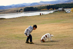Jongensspel met Puppy Royalty-vrije Stock Foto's