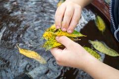 Jongensspelen met bladeren royalty-vrije stock afbeelding