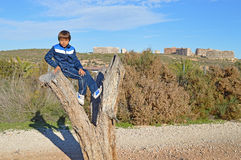 Jongenszitting in een Boom Royalty-vrije Stock Afbeeldingen