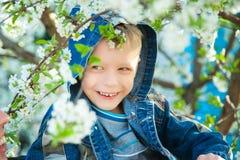 Jongenszitting onder takken van de lenteboom in bloesems Royalty-vrije Stock Fotografie