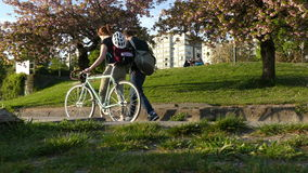 Jongeren die de bicycling zomer aanstoten stock footage