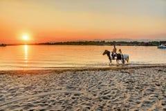 Jongeren die paarden in de zonsondergang berijden door het overzees op islan Stock Foto