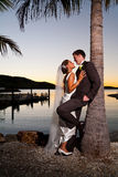 Jonggehuwden die onder een palm bij zonsondergang omhelzen Royalty-vrije Stock Foto's