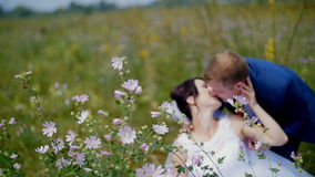 Jonggehuwden die op een gebied lopen - de bruid en de bruidegom spelen met bloemen stock video