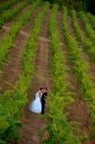 Jonggehuwden in een wijngaard stock afbeelding