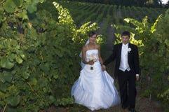 Jonggehuwden in een wijngaard stock foto