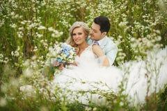 Jonggehuwden op het gebied Royalty-vrije Stock Afbeeldingen