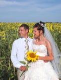 Jonggehuwden op zonnebloemgebied royalty-vrije stock fotografie