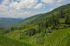 Jongli Rice Terraces in Guilin, China Royalty Free Stock Photography