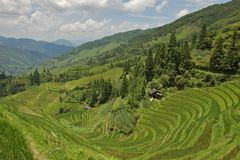 Jongli Rice Terraces in Guilin, China Royalty Free Stock Images