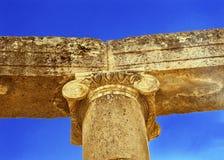 Jonisk kolonnCOval Plaza forntida Roman City Jerash Jordan Arkivbild