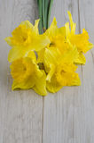 Jonquil flowers. Yellow jonquil flowers on wooden background royalty free stock photos