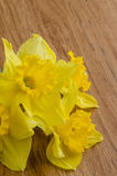 Jonquil flowers. Yellow jonquil flowers on wooden background stock photo
