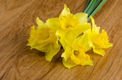 Jonquil flowers. Yellow jonquil flowers on wooden background royalty free stock images
