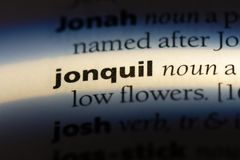 Jonquil. Word in a dictionary.  concept royalty free stock images