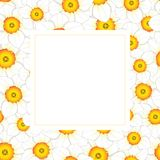 Jonquille blanche - Narcissus Flower Banner Card Border Illustration de vecteur Illustration Libre de Droits