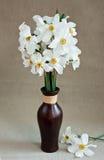 Jonquilles blanches dans un vase photo stock