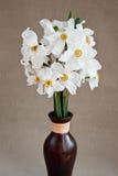 Jonquilles blanches dans un vase image libre de droits