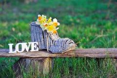 Jonquilles jaunes et mot de décoration d'amour Photo libre de droits