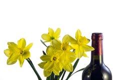 Jonquilles tôt de fleurs de ressort et une bouteille de vin de raisin rouge images stock
