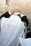 Jood die bij de Westelijke Muur in Jeruzalem bidt. Royalty-vrije Stock Fotografie