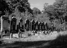 Joodse graven royalty-vrije stock foto's