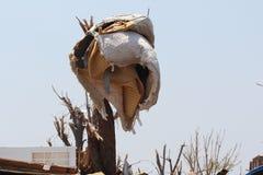 Joplin, danno di Mo dal ciclone EF5 Fotografia Stock