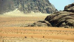 jordão Imagens de Stock Royalty Free