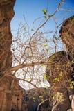 jordão petra Fotografia de Stock Royalty Free