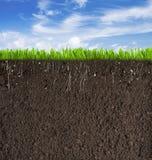 Jord- eller smutsavsnitt med gräs under himmel som Arkivfoto