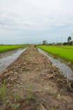 Jord- fördämning i fält Royaltyfri Bild