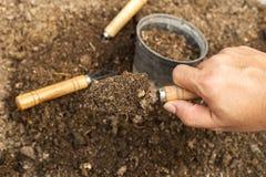 Jord i sked Arbeta i trädgården hjälpmedel och jord Arkivbilder