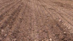 Jord och traktoren gödslar fältet Plantera suggaskördar stock video