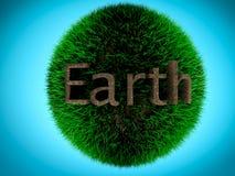 Jord som är skriftlig vid jord på gräsboll Begrepp av miljön Royaltyfria Bilder