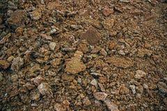 Jord sten, textur Arkivfoton