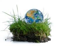 Jorda en kontakt jordklotet i ett stycke av grönt gräs som isoleras på vit arkivbild