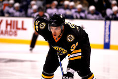 Jordan Caron Boston Bruins Stock Images