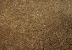 Jordan desert textu gliny Zdjęcia Royalty Free