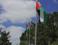 Jordan Flag Photo stock