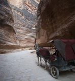 Jordan. Horse carriage in the Petra canyon Royalty Free Stock Image