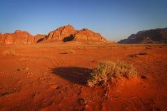 Jordan: Morning in Wadi Rum Stock Image
