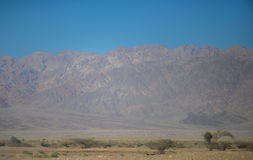 Jordan mountains view from negev walley Stock Images