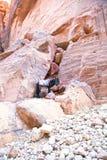 Jordan. Petra. Petra, Jordan. Petra is one of the New Seven Wonders of the World. UNESCO World Heritage. 20 july, 2014 Stock Photos