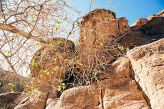 Jordan. Petra Stock Image